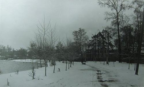 Белое озеро. Месторасположение биостанции справа.